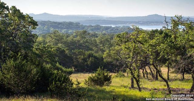 1559 Lake Ridge Blvd, Canyon Lake, TX 78133 (MLS #1289113) :: Magnolia Realty