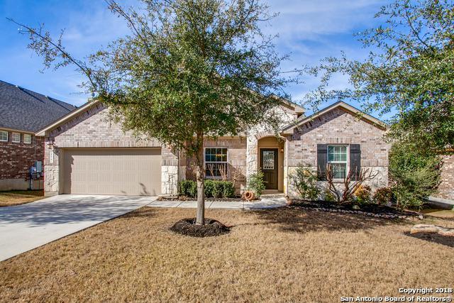 28927 Gooseberry, San Antonio, TX 78260 (MLS #1289242) :: Exquisite Properties, LLC