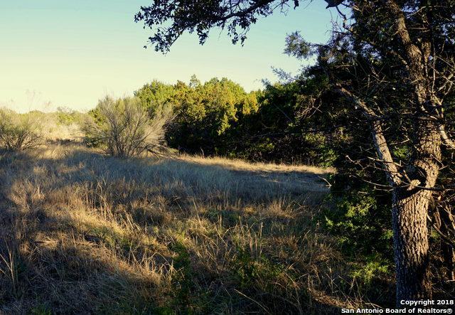 204 Ensenada Dr, Canyon Lake, TX 78133 (MLS #1289325) :: Magnolia Realty