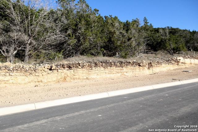 619 Winding Ravine, San Antonio, TX 78258 (MLS #1290276) :: Magnolia Realty