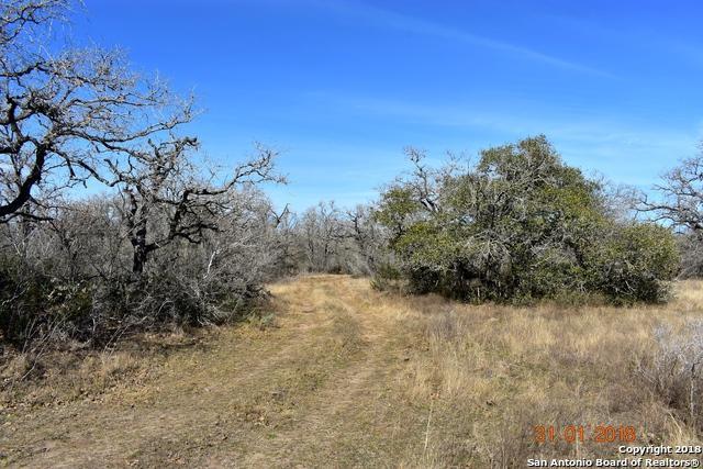 0 Highway 80, Gillett, TX 78118 (MLS #1290462) :: Neal & Neal Team