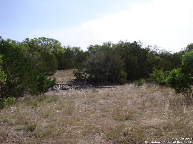 TRACT 33 Cr 251, Hondo, TX 78861 (MLS #1290591) :: The Castillo Group