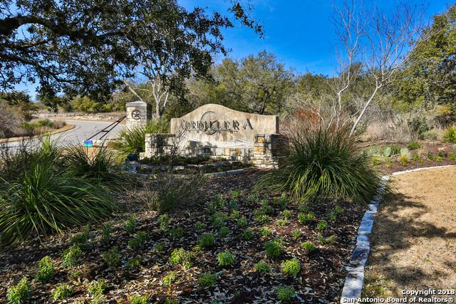 LOT 16 Clubs Drive, Boerne, TX 78006 (MLS #1290959) :: Magnolia Realty