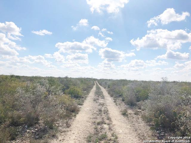 000 Los Lomas Ranch Rd, Freer, TX 78357 (MLS #1291147) :: The Castillo Group