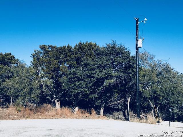 263 Colt Dylan Dr, Canyon Lake, TX 78133 (MLS #1291242) :: Erin Caraway Group
