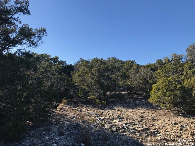 1532 Desiree St, Canyon Lake, TX 78133 (MLS #1291250) :: Erin Caraway Group