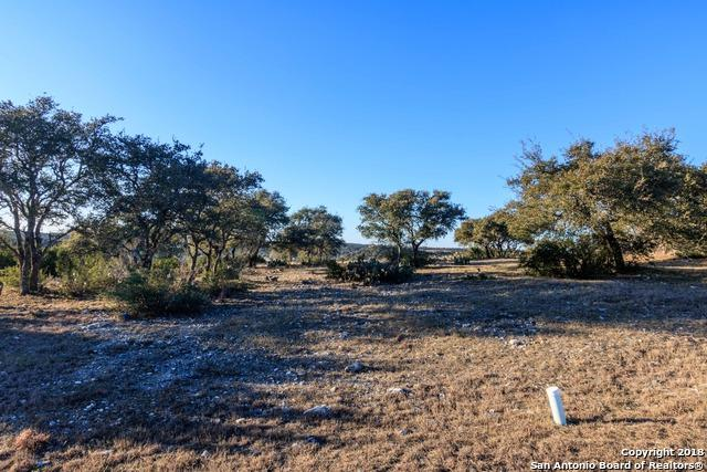 430 Paradise Point Dr, Boerne, TX 78006 (MLS #1291381) :: Magnolia Realty