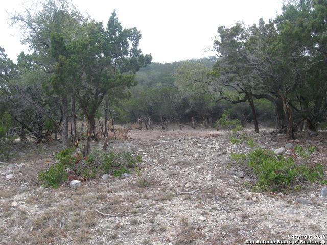 LOT 25 Pr 1712 & Pr, Mico, TX 78056 (MLS #1291399) :: Exquisite Properties, LLC