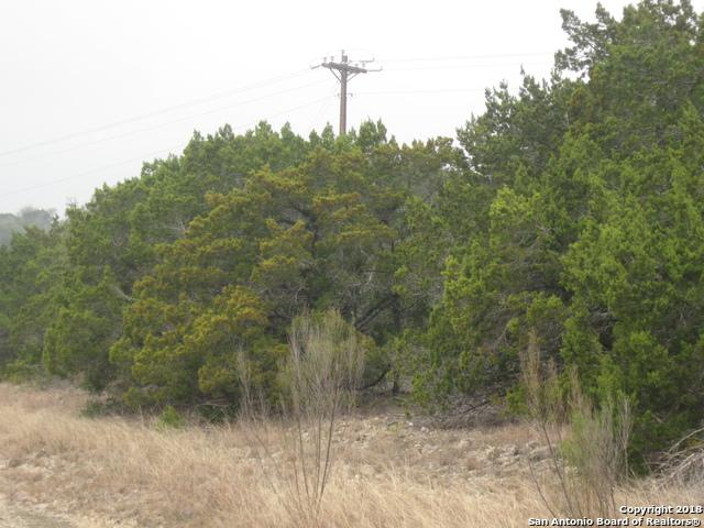 LOT 26 Pr 1712 & Pr, Mico, TX 78056 (MLS #1291400) :: Exquisite Properties, LLC