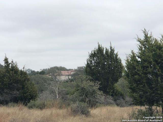 1127 Diretto, New Braunfels, TX 78132 (MLS #1291470) :: Magnolia Realty