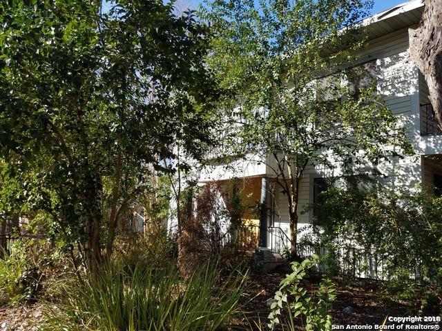 123 Parland Pl, San Antonio, TX 78209 (MLS #1291729) :: Exquisite Properties, LLC