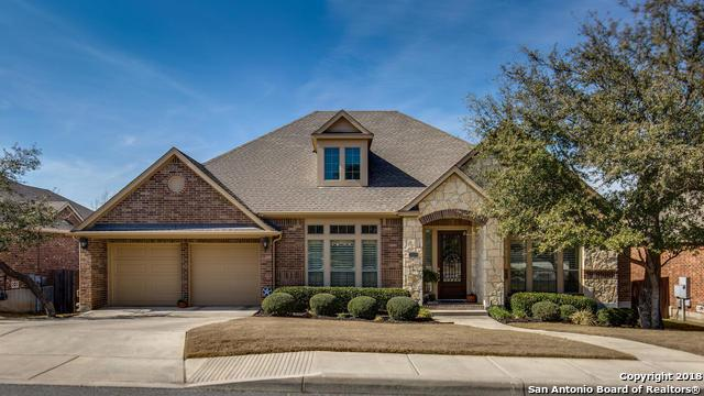 25559 Painted Rock, San Antonio, TX 78255 (MLS #1291780) :: NewHomePrograms.com LLC