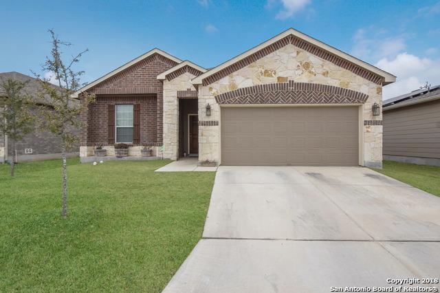 331 E Rustic Willow, Selma, TX 78154 (MLS #1291802) :: Magnolia Realty