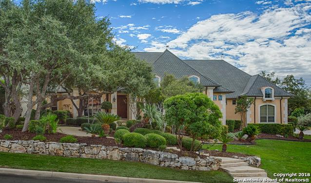 17 Caleb Cir, San Antonio, TX 78258 (MLS #1292020) :: Exquisite Properties, LLC