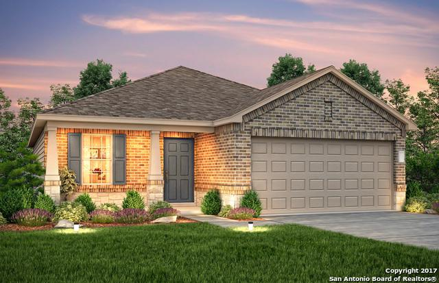 9941 Waddie Lane, San Antonio, TX 78254 (MLS #1292111) :: Exquisite Properties, LLC