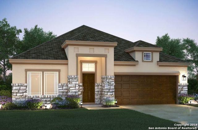 6226 Alta Puerta, San Antonio, TX 78247 (MLS #1292152) :: The Castillo Group