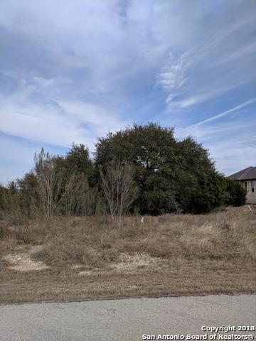 1227 Acquedotto, New Braunfels, TX 78132 (MLS #1292350) :: Magnolia Realty