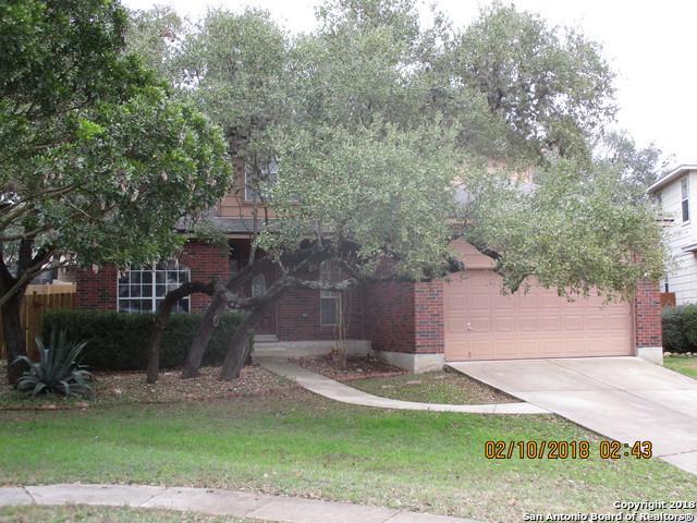 9502 Willow Hollow, San Antonio, TX 78254 (MLS #1292380) :: The Castillo Group