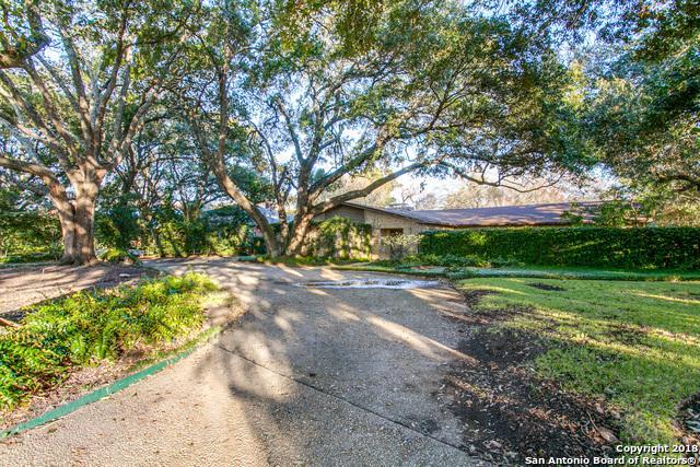 265 Geneseo Rd, Terrell Hills, TX 78209 (MLS #1292440) :: The Castillo Group