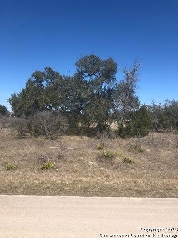 1221 Paladin Trail, Spring Branch, TX 78070 (MLS #1292606) :: Exquisite Properties, LLC