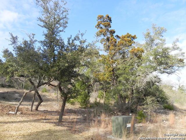 19615 Terra Mont, San Antonio, TX 78255 (MLS #1292622) :: Magnolia Realty