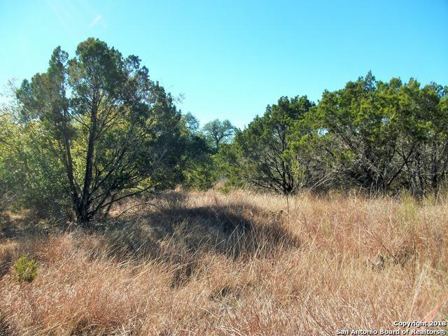 441 Cimarron, Spring Branch, TX 78070 (MLS #1292724) :: Magnolia Realty