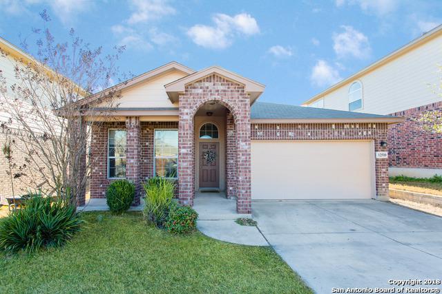 12510 Painted Daisy, San Antonio, TX 78253 (MLS #1292857) :: The Castillo Group