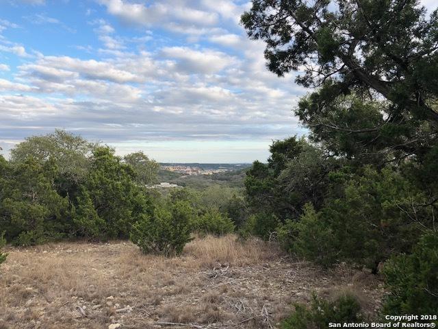 19522 Terra Elm, San Antonio, TX 78255 (MLS #1292953) :: Magnolia Realty