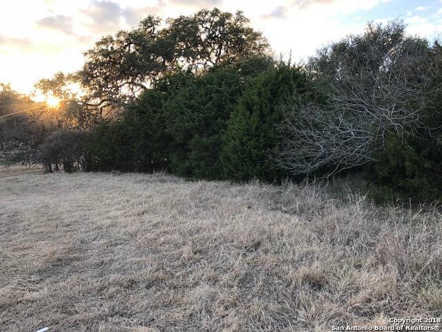 25823 White Eagle Dr, San Antonio, TX 78260 (MLS #1292960) :: Magnolia Realty