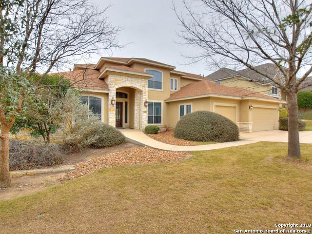 3642 Ivory Creek, San Antonio, TX 78258 (MLS #1293027) :: The Castillo Group