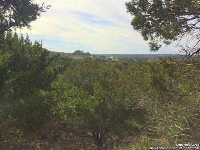1101 Bella Vista, Canyon Lake, TX 78133 (MLS #1293081) :: Exquisite Properties, LLC