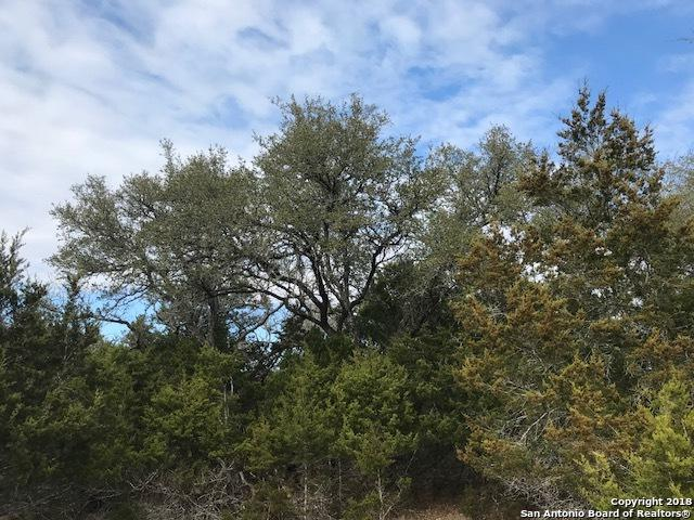 112 Arroyo, Boerne, TX 78006 (MLS #1293184) :: Magnolia Realty