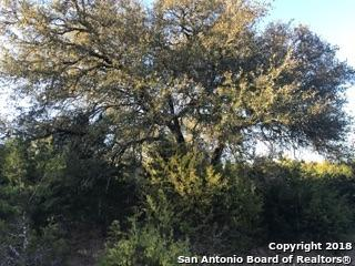 LOT 92 Mountain View, Boerne, TX 78006 (MLS #1293473) :: Alexis Weigand Real Estate Group
