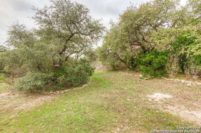 919 Bastione, San Antonio, TX 78253 (MLS #1293597) :: Exquisite Properties, LLC