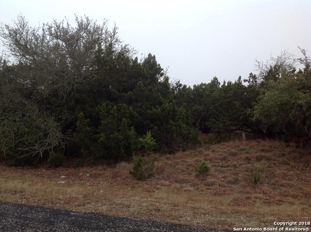 711 Backdrop, San Antonio, TX 78260 (MLS #1293679) :: Alexis Weigand Real Estate Group