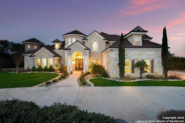 2258 Pinot Blanc, New Braunfels, TX 78132 (MLS #1293736) :: The Castillo Group