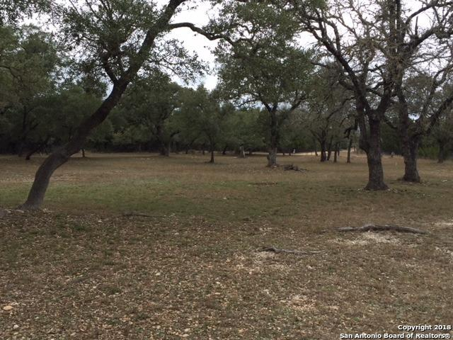 450 Park, Bandera, TX 78003 (MLS #1293856) :: Alexis Weigand Real Estate Group