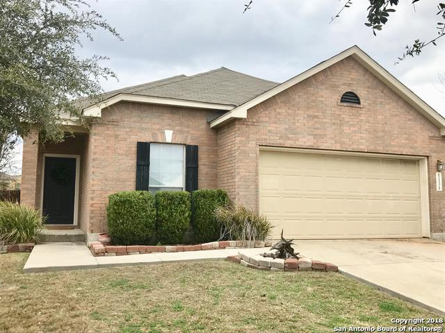 1131 Sandhill Crane, New Braunfels, TX 78130 (MLS #1293956) :: The Castillo Group