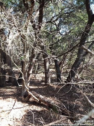 10215 Oak Forest Way, New Braunfels, TX 78132 (MLS #1294071) :: Exquisite Properties, LLC