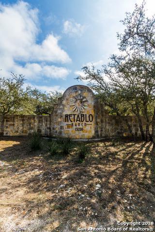 14342 Santa Rita, Helotes, TX 78023 (MLS #1294224) :: Alexis Weigand Real Estate Group