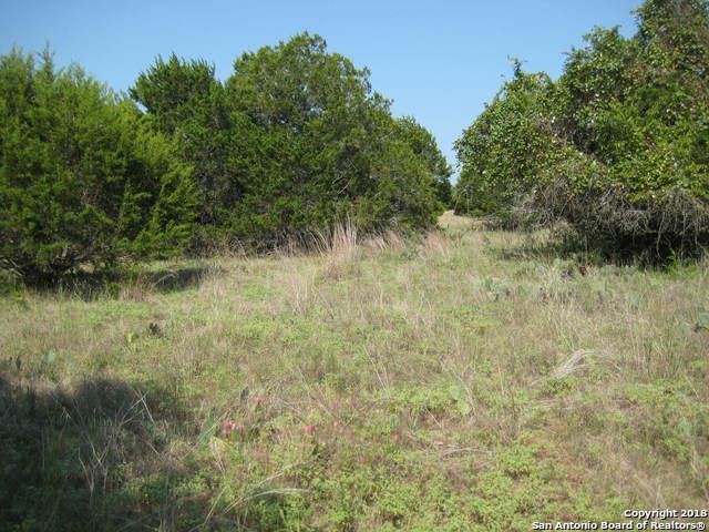 00 Sleepy Hollow Ct., Wimberley, TX 78676 (MLS #1294250) :: Erin Caraway Group