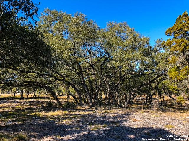 5672 (LOT 155) Dry Comal Dr, New Braunfels, TX 78132 (MLS #1294267) :: Magnolia Realty