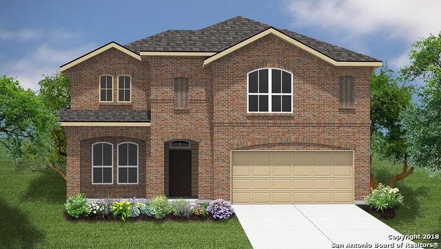1371 Fall Cover, New Braunfels, TX 78130 (MLS #1294312) :: The Castillo Group