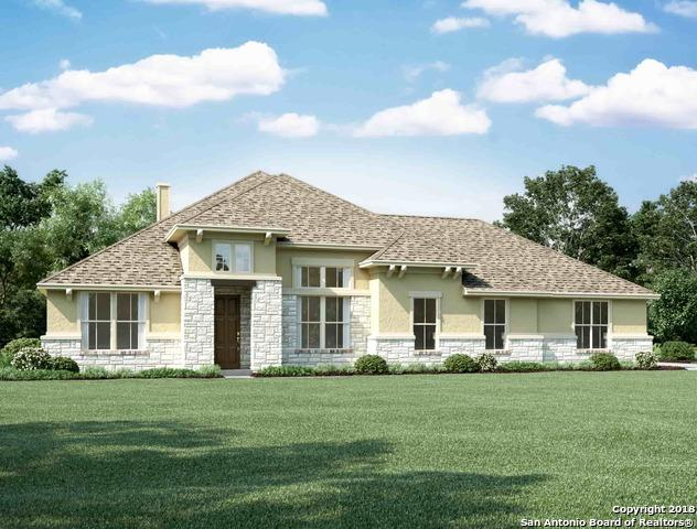 5672 High Forest, New Braunfels, TX 78132 (MLS #1294329) :: Magnolia Realty