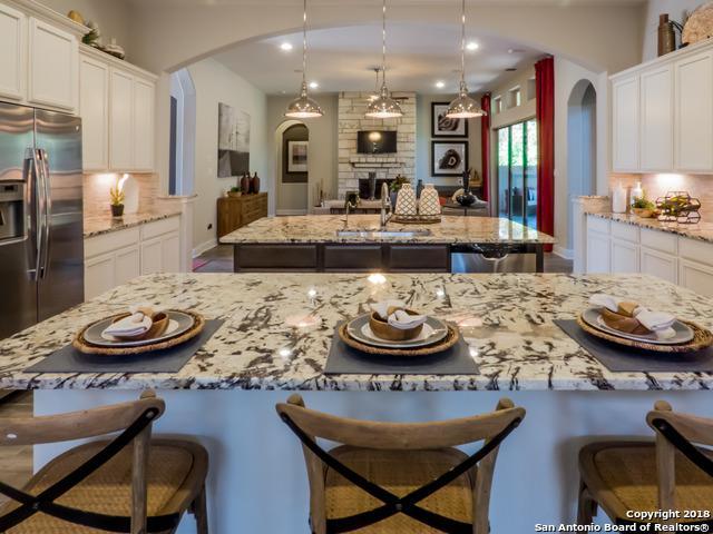 24015 Azul Dawn, San Antonio, TX 78261 (MLS #1294499) :: Exquisite Properties, LLC