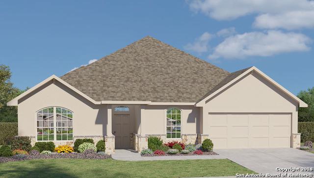 224 Bamberger Ave, New Braunfels, TX 78132 (MLS #1294501) :: NewHomePrograms.com LLC