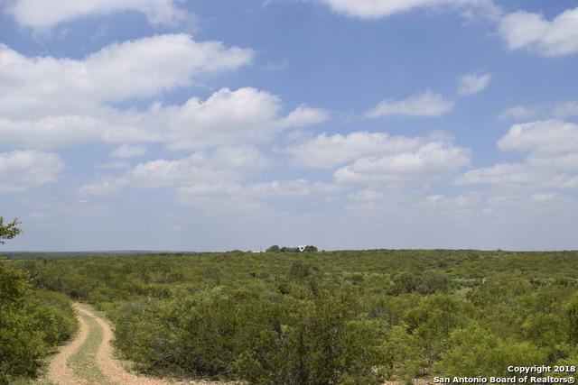 4250 Hwy 57, Moore, TX 78057 (MLS #1294906) :: Exquisite Properties, LLC