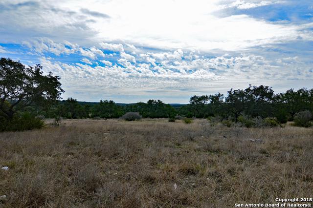 2033 San Jose Way, Canyon Lake, TX 78133 (MLS #1294973) :: Alexis Weigand Real Estate Group