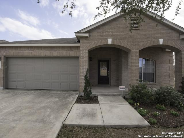 1208 Ruddy Duck, New Braunfels, TX 78130 (MLS #1295147) :: The Castillo Group