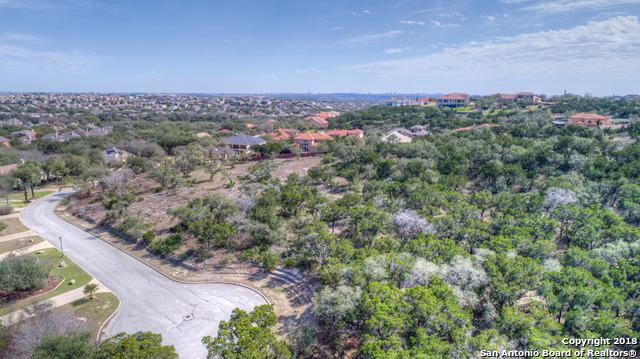 419 Candelaria, Helotes, TX 78023 (MLS #1295272) :: The Castillo Group